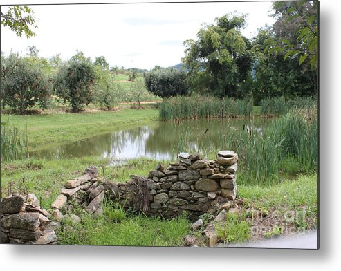 Pond Metal Print featuring the photograph 167 by Bryrrose Photography