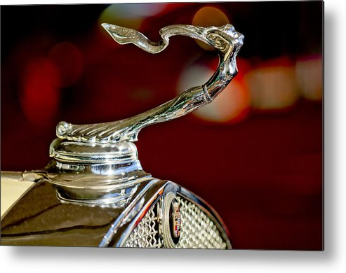 1931 Cadillac 355 A Roadster Metal Print featuring the photograph 1931 Cadillac 355 A Roadster Hood Ornament by Jill Reger