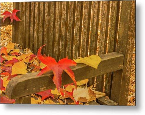 Autumn Metal Print featuring the photograph A Foliage Pillow On A Bench In A Woodland by Susanna Mattioda