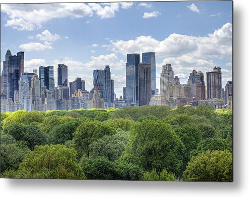 Central Park Metal Print featuring the photograph Central Park South by Ariane Moshayedi