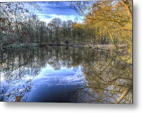 Frost Metal Print featuring the photograph Early Morning Forest Pond by David Pyatt