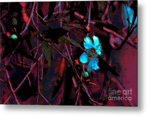 Landscape Flowers Blooms Art Photography Metal Print featuring the digital art Blooms by Tza Tzart