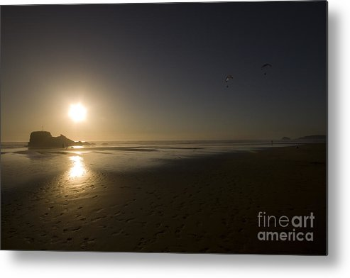 Cornwall Metal Print featuring the photograph The Flying Ones by Angel Ciesniarska