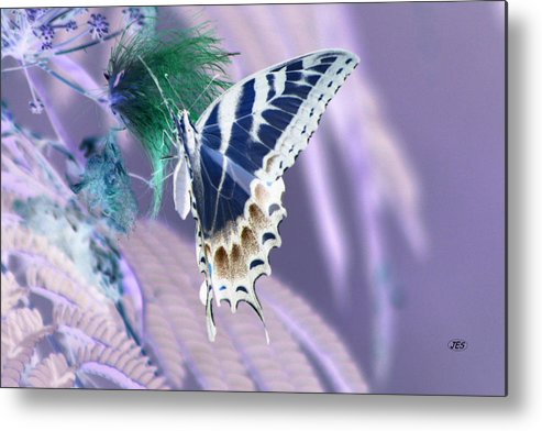 Air Metal Print featuring the photograph 5816 2 by Jim Simms