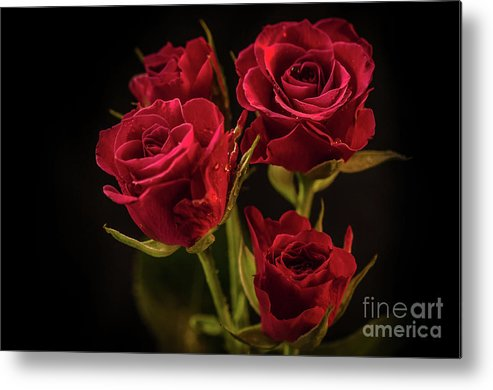 Nature Metal Print featuring the photograph For Her by Lyudmila Prokopenko