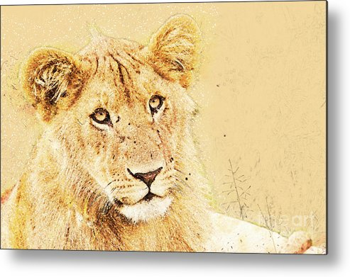 Lion Metal Print featuring the photograph lioness Masai Mara, Kenya by Humorous Quotes