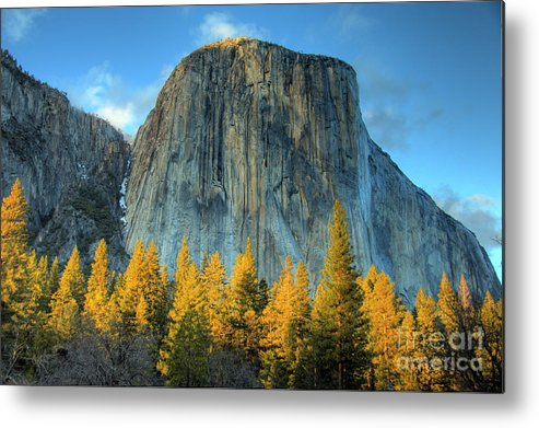 El Capitan Metal Print featuring the photograph El Capitan by Marc Bittan