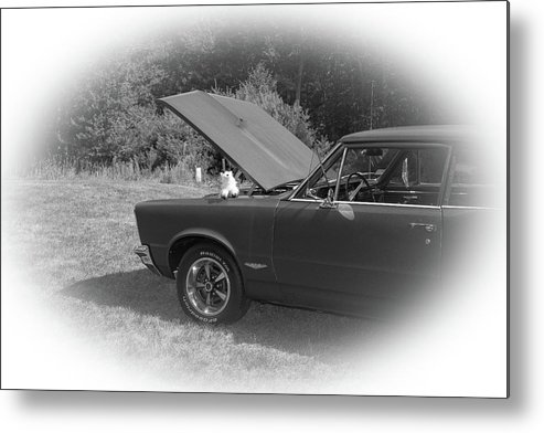 Classic Metal Print featuring the photograph Classic Cars by Mickie Bettez