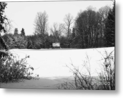 Cabin Metal Print featuring the photograph A Little Cabin In The Woods by Cathy Beharriell