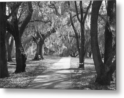 Black And White Metal Print featuring the photograph A Place For Contemplation - Black And White by Suzanne Gaff