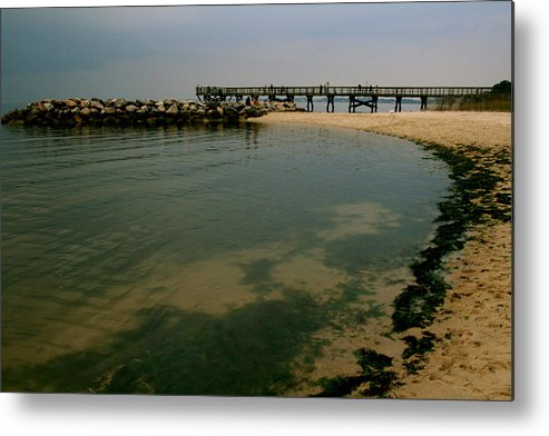 Landscape Metal Print featuring the photograph A Sea Of Seaweed by Aimee Galicia Torres