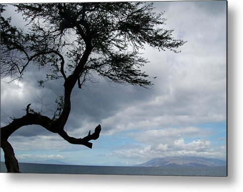 Hawaii Metal Print featuring the photograph A View From Maui by J D Banks