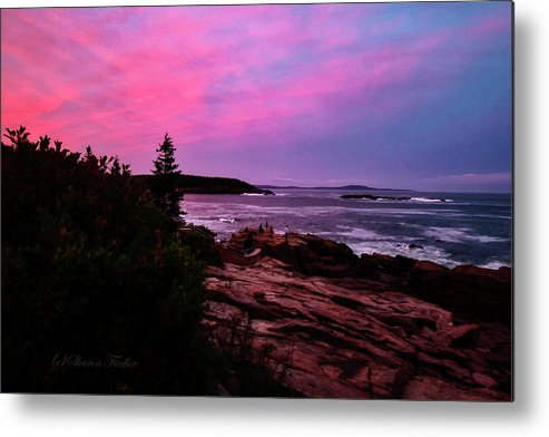 Maine Scenery Metal Print featuring the photograph Acadia National Park Sunset by Sharon Fiedler