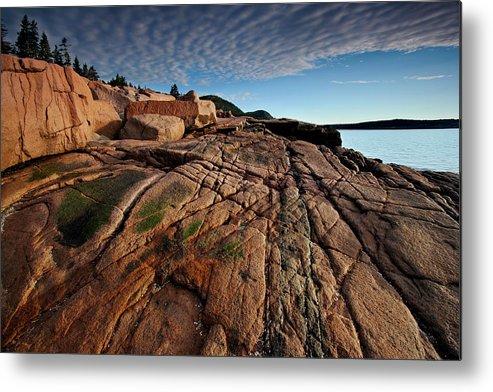 Acadia Metal Print featuring the photograph Acadia Rocks by Neil Shapiro