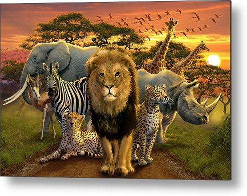 Africa Metal Print featuring the photograph African Beasts by Andrew Farley