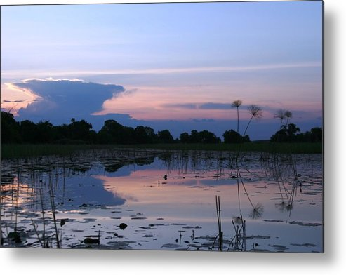 African Delta Metal Print featuring the photograph African Delta by Linda Russell
