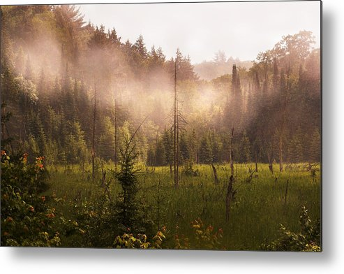 Algonquin Park Metal Print featuring the photograph Afternoon Mist by Linda McRae