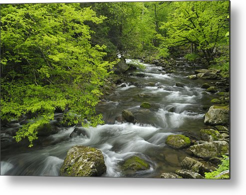 River Metal Print featuring the photograph Ancient Cascades In Great Smoky Mountains by Darrell Young