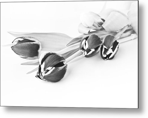Tulips Metal Print featuring the photograph Another Way To See The Beauty Of Nature by Enrico Crobu