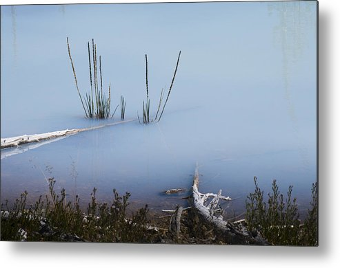 Chad Davis Metal Print featuring the photograph Artist Palette Of Blue by Chad Davis
