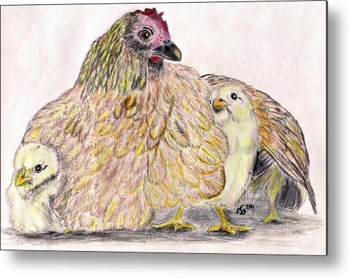 Chickens Metal Print featuring the drawing As A Hen Gathereth Her Chickens Under Her Wings by Marqueta Graham