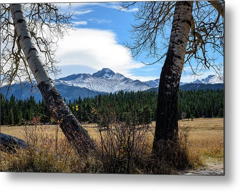 Aspen Metal Print featuring the photograph Aspen Frame Fall by Paul Moore