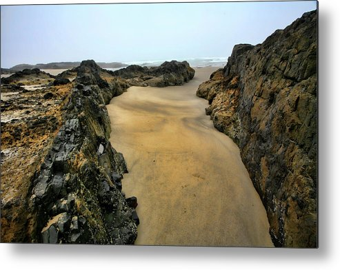 Tidepool Metal Print featuring the photograph At The Tidepool by Bonnie Bruno