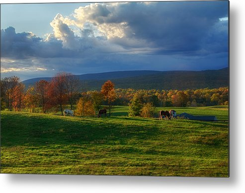 Farm Metal Print featuring the photograph Autumn Evening by Eleanor Bortnick