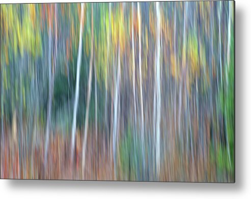 Forest Pastels Form An Autumn Impression Metal Print featuring the photograph Autumn Impression by Bill Morgenstern