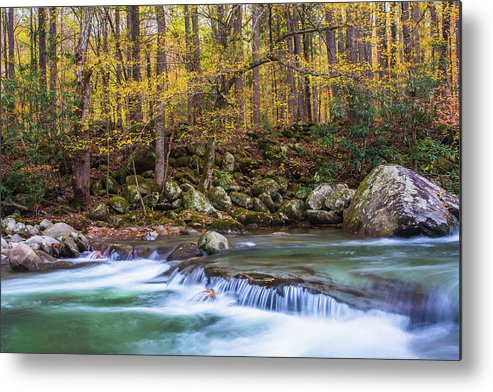 Smoky Mountains Metal Print featuring the photograph Autumn In Smoky Mountains National Park by Carol Mellema