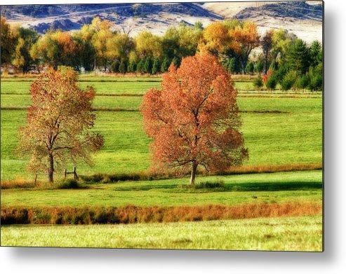 Autumn Metal Print featuring the photograph Autumn Landscape Dream by James BO Insogna
