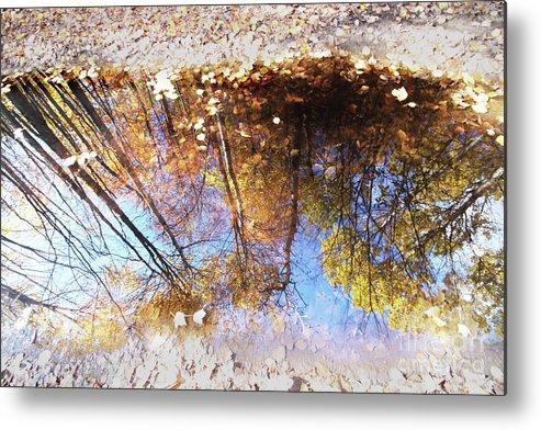 Autumn Metal Print featuring the photograph Autumn Print by Mircea Costina Photography