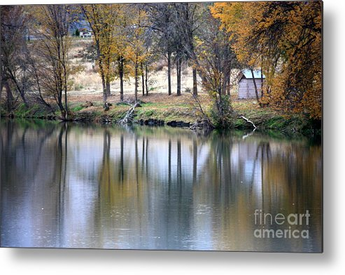 Fall Reflection Metal Print featuring the photograph Autumn Reflection 16 by Carol Groenen