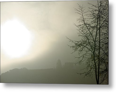 Backlight Metal Print featuring the photograph Backlight by Hartmut Knisel