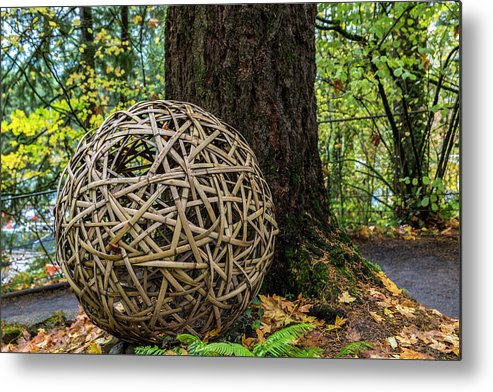 Bamboo Ball Metal Print featuring the photograph Bamboo Ball by George Herbert