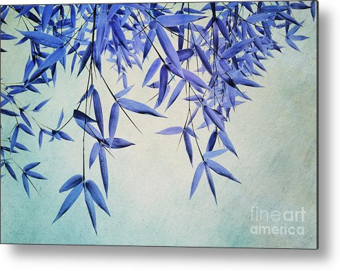 Bamboo Metal Print featuring the photograph Bamboo Susurration by Priska Wettstein