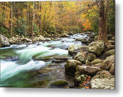 Smoky Mountains Metal Print featuring the photograph Beautiful Autumn Colors Little Pigeon River Smoky Mountains by Carol Mellema