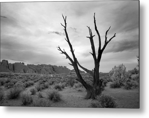 Black Metal Print featuring the photograph Better Off Dead by Mike Irwin