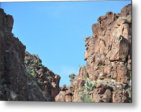 Landscape Metal Print featuring the photograph Bigbend Bighorn by Thor Sigstedt