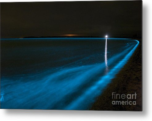 Bioluminescence Metal Print featuring the photograph Bioluminescence In Waves by Philip Hart