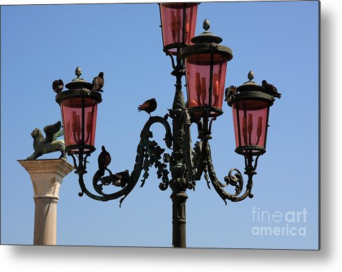 Venice Metal Print featuring the photograph Birds On A Lamp Post In Venice by Michael Henderson