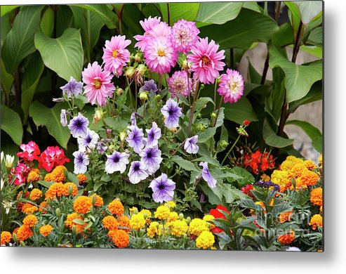 Bouquet Metal Print featuring the photograph Blossoming Flowers by Michal Boubin