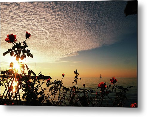 Seascape Metal Print featuring the photograph Boat At Sea And Roses by Aaron Fait