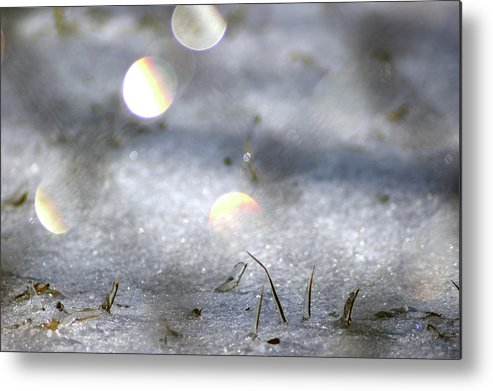 Metal Print featuring the photograph Bokeh Grass by Off The Beaten Path Photography - Andrew Alexander
