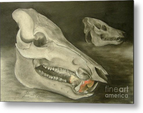 Pig Skull Metal Print featuring the drawing Bone Appetit by Julianna Ziegler