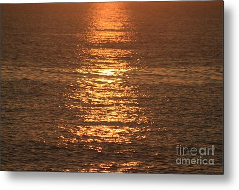 Ocean Metal Print featuring the photograph Bronze Reflections by Nadine Rippelmeyer