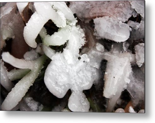 Ice Metal Print featuring the photograph Brrrrr by Erin Rosenblum