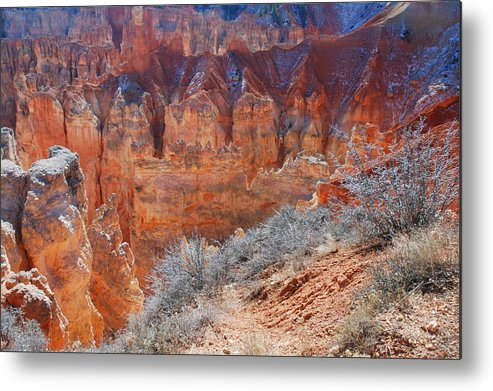 Bryce Canyon Metal Print featuring the photograph Bryce Canyon Light by Stephen Vecchiotti