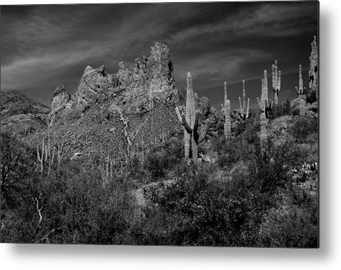 Desert Photography Metal Print featuring the photograph Byous Butte by John Gee