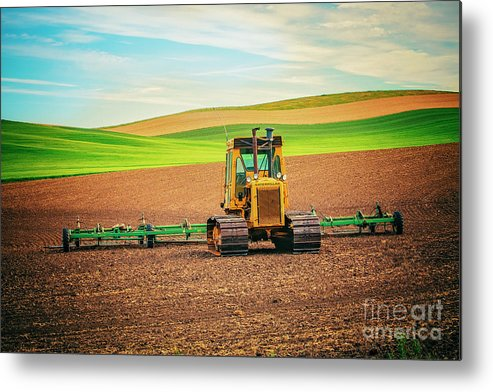 Caterpillar Metal Print featuring the photograph Caterpillar And The Earth by Katya Horner
